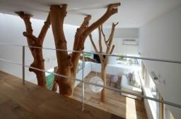 La arquitectura interior y el Feng Shui
