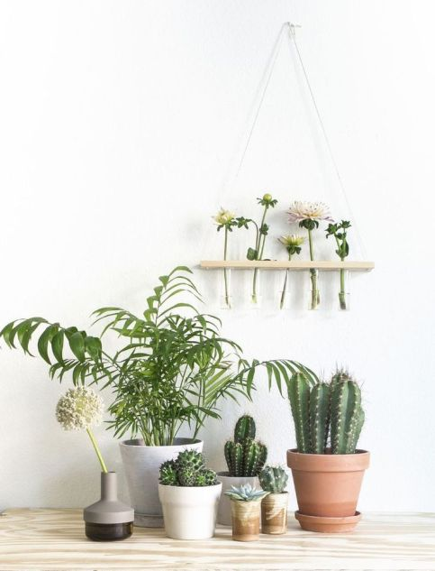 Ideas-para-decorar-tu-hogar-con-macetas-11