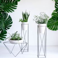 Ideas-para-decorar-tu-hogar-con-macetas-12