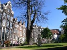 amsterdam_begijnhof_2008