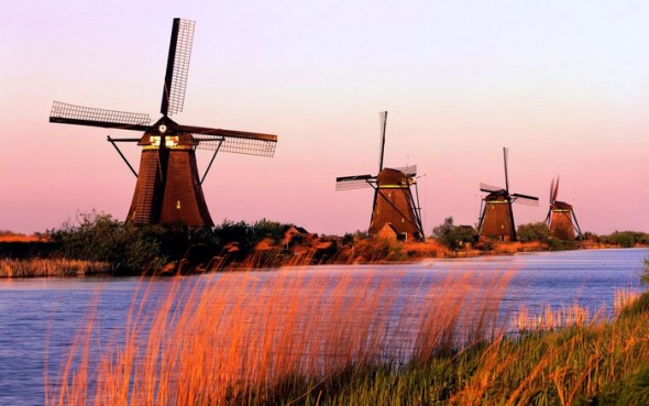 Kinderdijk-South-Holland-Netherlands-590x369.jpg
