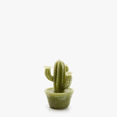 Vela cactus Zarahome